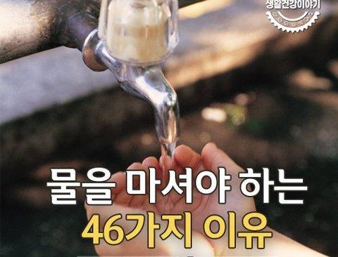 물을 꼭 마셔야하는 46가지 이유
