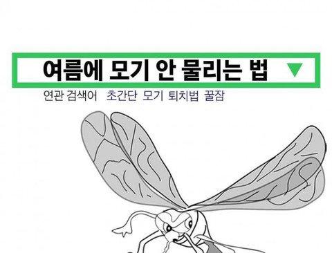 30년 모기 연구가가 알려주는 모기 퇴치법 .jpg