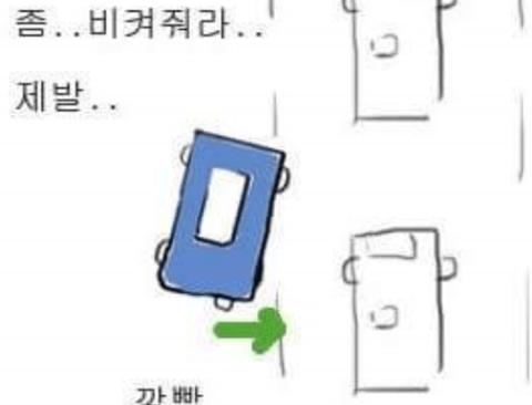 대한민국 운전문화의 특징 (공감주의)