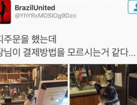 역대급 루왁 커피 사장님 레전드