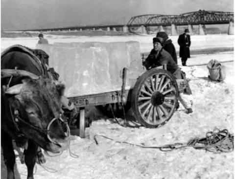 옛날 한강의 얼음장수들.jpg