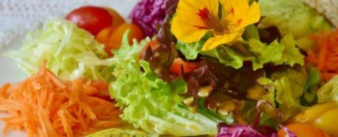 쓴맛 나는 한련화, 알고 먹으면 더 맛있는 식용꽃 일곱 가지