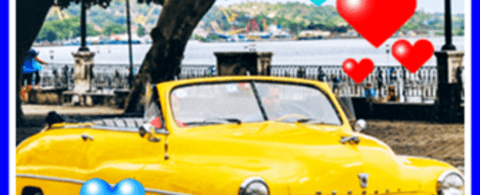 인터넷 자동차보험료 비교견적사이트 활용 및 신규 자동차보험 종류 확인
