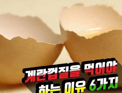 계란껍질 먹어야 하는 이유 6가지