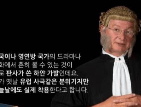 영국판사들이 하얀가발을 쓰는 이유