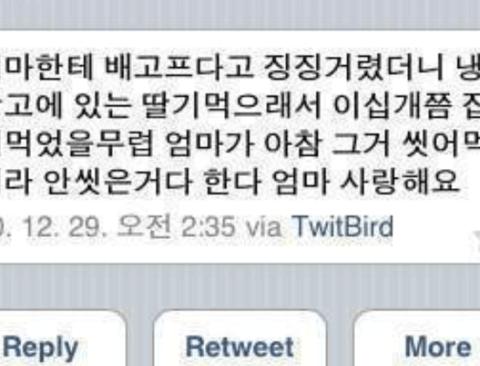 개그우먼 박지선 트위터.jpg