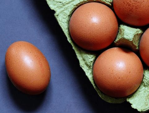 계란의 적힌 숫자로 신선도 확인하는 방법