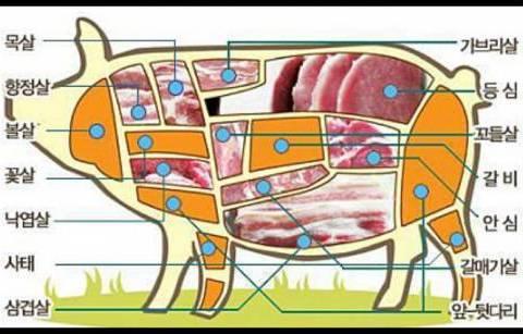 돼지고기 고르는 팁!.jpg