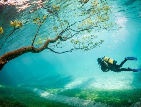 """1년에 딱 2달만 생겼다 사라지는 호수 """"그린레이크"""""""