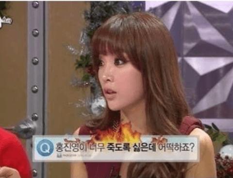 홍진영이 죽도록 싫은 한 네티즌(홍진영주의)