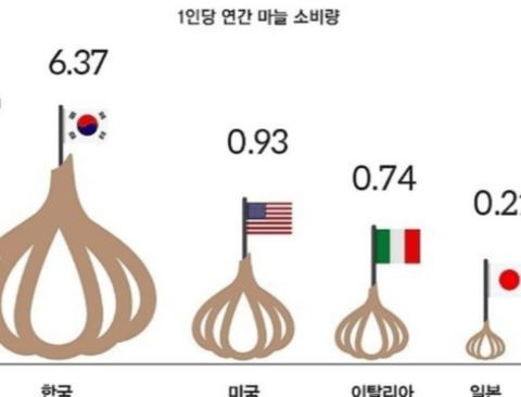한국 마늘 소비의 진실.jpg