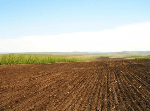 똑똑한 토지 투자 비법 9가지