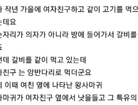 여친이 방귀로 벌레 죽인 썰 (feat. 댓글빌런)