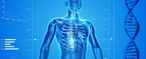 뼈 튼튼에 시큼한 자몽, 의외로 뼈에 좋은 식품 다섯 가지