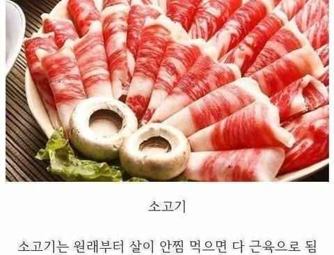 허언갤에서 말하는 살 안찌는 다이어트 음식