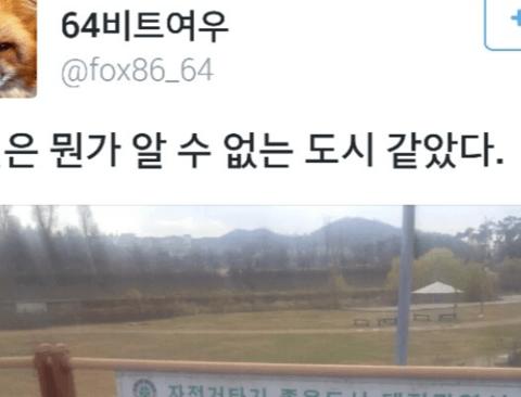 도대체 알 수 없는 도시 대전.twiter