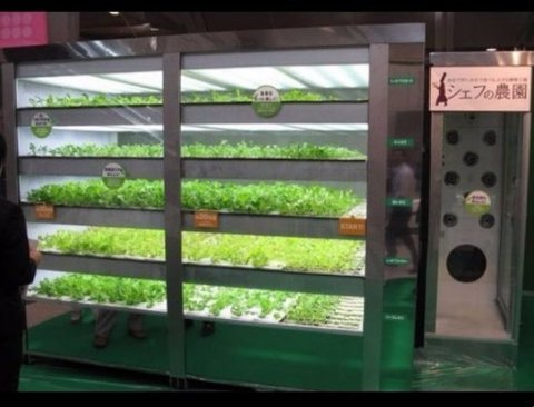 세계의 기발하고 특이한 자판기 BEST 7