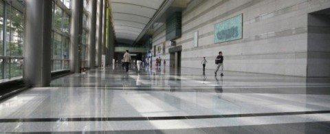 애플이 5위? 우리나라 취준생들이 가장 취업하고 싶어하는 외국계 기업 TOP 5