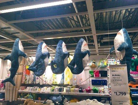 해외에서 핫 하다는 상어인형.jpg