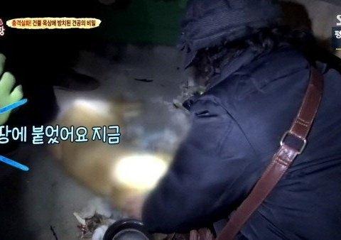 동물농장 레전드 '동물학대' 아줌마 ㄷㄷ(분노주의)