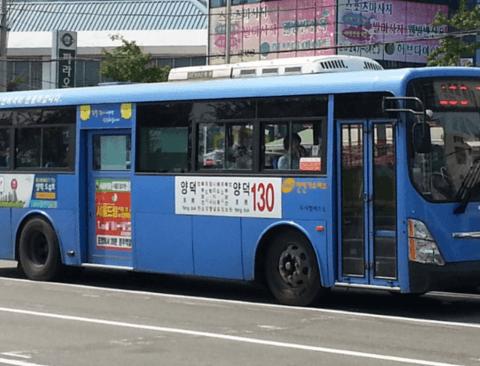 버스 번호, 색깔, 환승의 숨겨진 비밀 5가지
