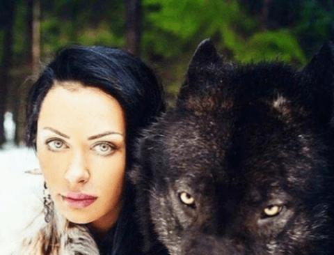 실제 늑대 크기.jpg