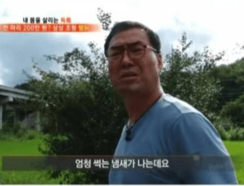 280만원짜리 닭백숙의 정체.jpg