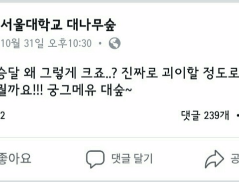 달이 너무 큰게 궁금했던 서울대생(feat.이과vs문과)