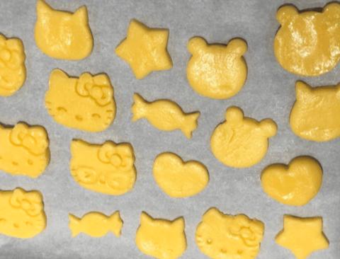 쿠키 이상과 현실 차이