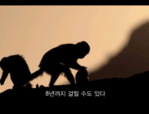 [스압] 석기시대에 진입한 꼬리감는 원숭이