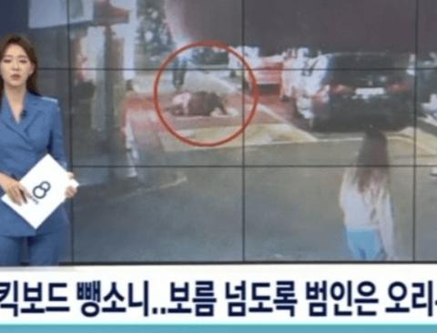 CCTV 영상 줄테니 뺑소니 범인 찾아봐라