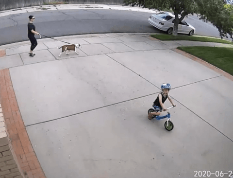 [스압] 우리 집 앞에서 자전거 타는 옆집 아이를 위한 조치