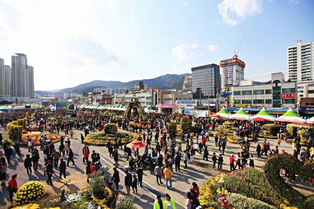 [문화관광국]1 마산국화축제2.JPG