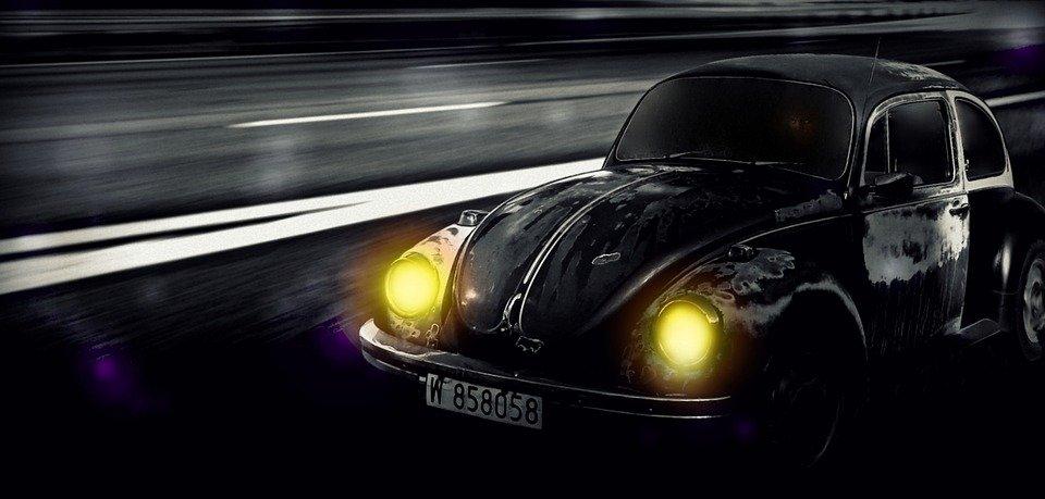 beetle-2483510_960_720