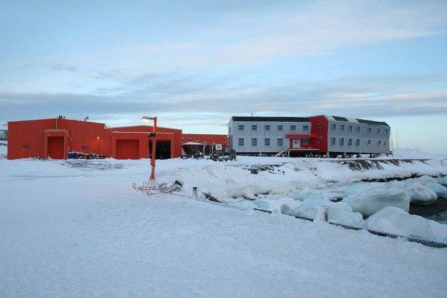 남극 세종기지에 많은 질환 (2)